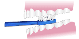 illustration brushing chewing surfaces of teeth